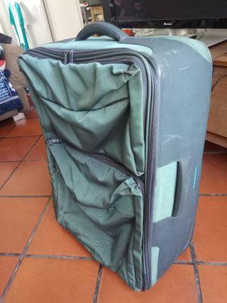 Mandarin Duck Check in Luggage