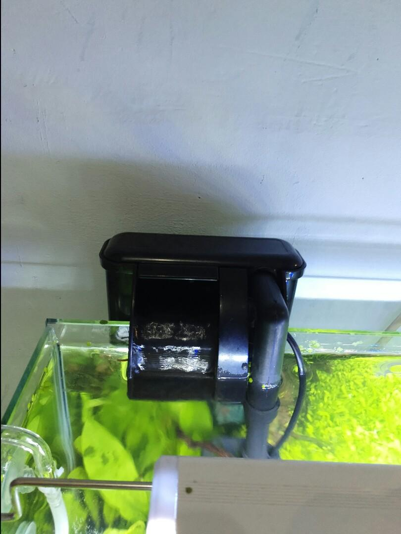 Aquascape, baru di instalasi tinggal pake, banyak bonusnya