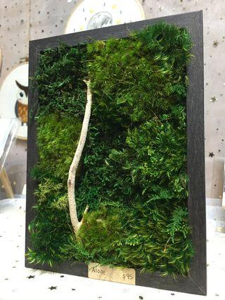 Moss Art Wall ~ 3D Real Preserved Moss wood Decor