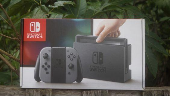 nintendo switch grayy color