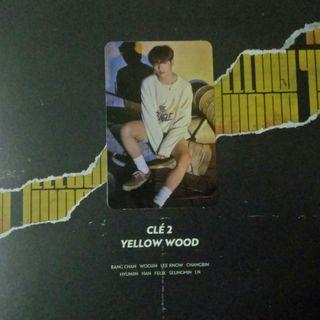 [WTT] Stray Kids CLE 2: Yellow Wood(Woojin concept photocard)