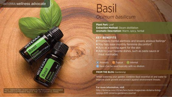 Basil Essential Oil (Normal Price : RM145)