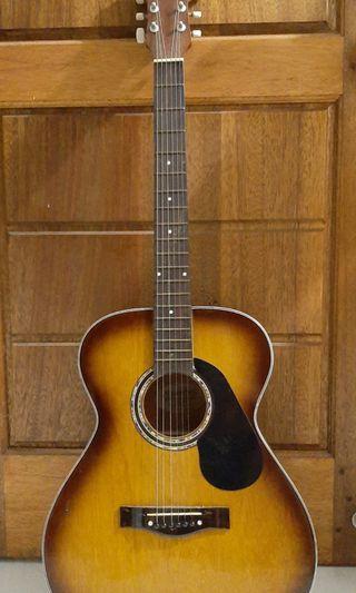 Gitar String FALMONS