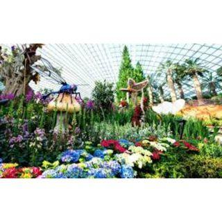 4 open e-tickets to Flower Dome & Cloud Forest at Garden by the Bay