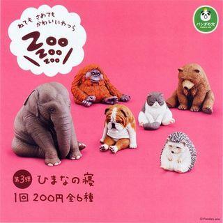休眠動物園第3彈 紅毛猩猩/大象/棕熊