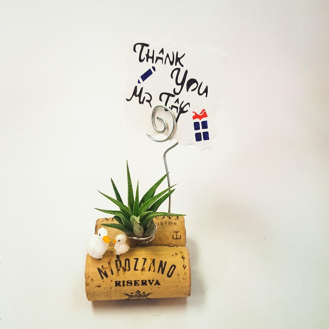 Teacher's Day Gift - Air plant with little ducklings