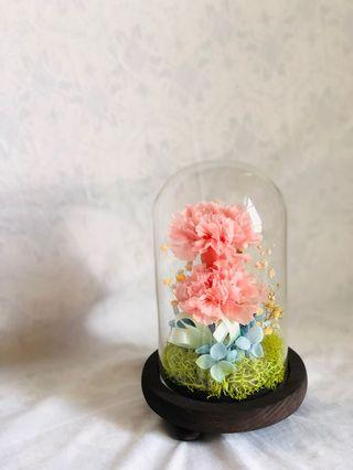 INSTOCK 🌸 Real Preserved Pink Carnations in Flower Dome