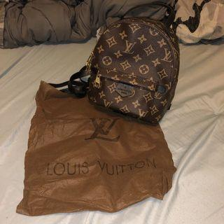 Louis Vuitton Palm Springs Replica Backpack