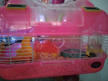 Kandang Hamster & Hamster
