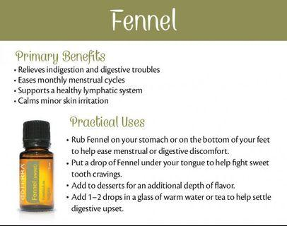 Fennel Essential Oil (Normal Price : RM91)