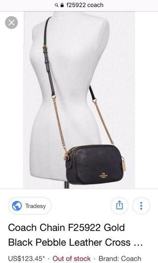 Coach Leather Cross Body with Pouch