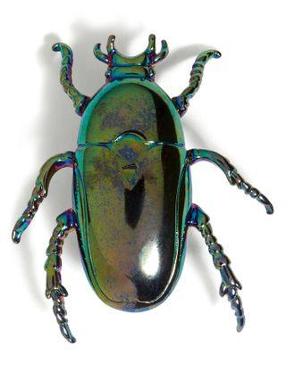 Banana Republic Beetle Brooch