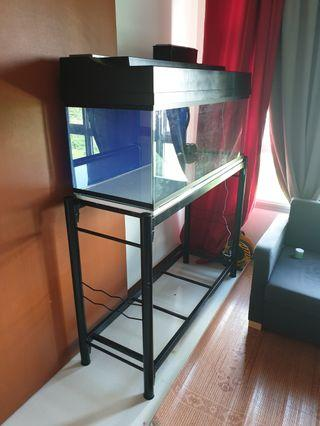 Taking orders for new 4 Feet fish tank complete set