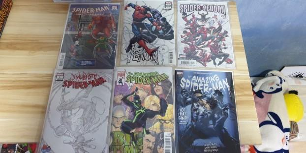 🚚 Assorted Spider-Man Comic Variant Covers.