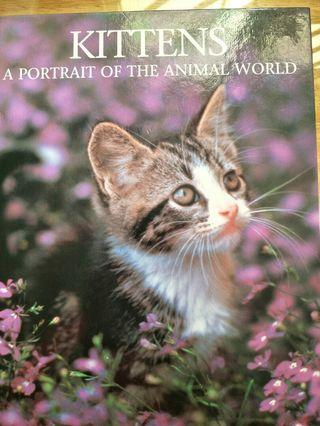 Book on Kittens