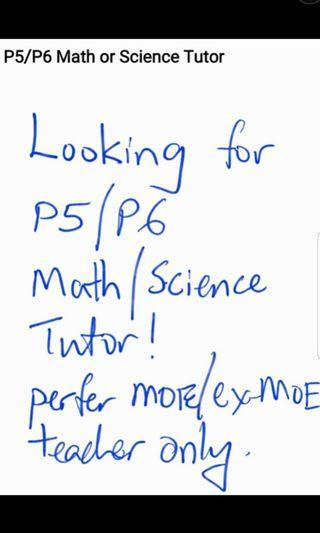 Looking for P5 P6 Math and Science Tutor. Redhill area.