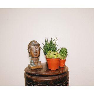 DC161 Distressed Buddha Head