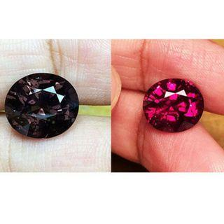 (Collector's) UnHeated,Untreated, Natural Color Change Garnet. Collector's Grade. 5.70cts. PM for details. R2/8/8719