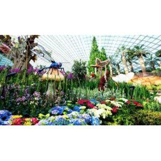2 standard e-tickets to Flower Dome & Cloud Forest