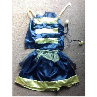 Little Girl's Costumes/Dress-Ups