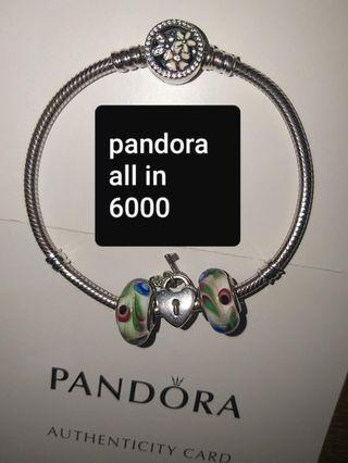 Original Pandora Preloved Poetic bloms bracelet with 3 charms.and all inclusions