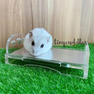 🚚 Hamster Acrylic Cooling Bed