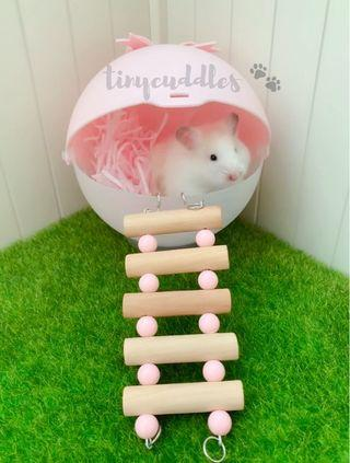 Candy Pink Bow Ball Hamster House - Syrian and Dwarf