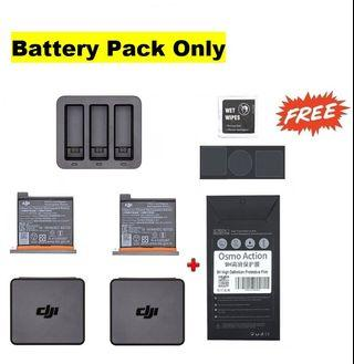 DJI Osmo Action Battery + Charging Dock free Screen Protect