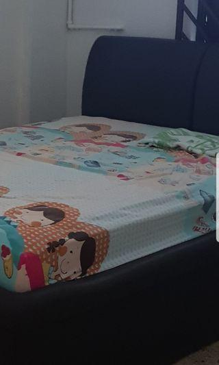 Seahorse Queen size bed with mattress