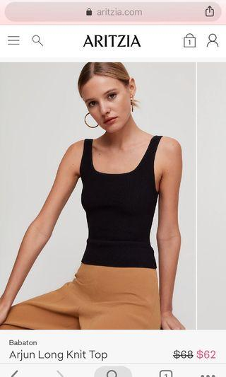 Aritzia Arjun Top Long version