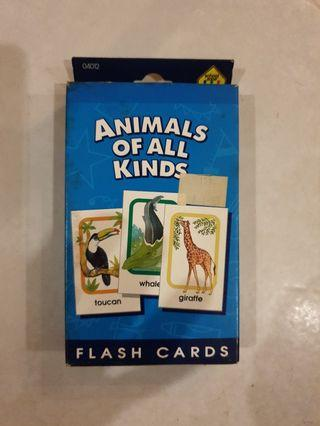 🚚 ANIMALS OF ALL KINDS - FLASH CARDS