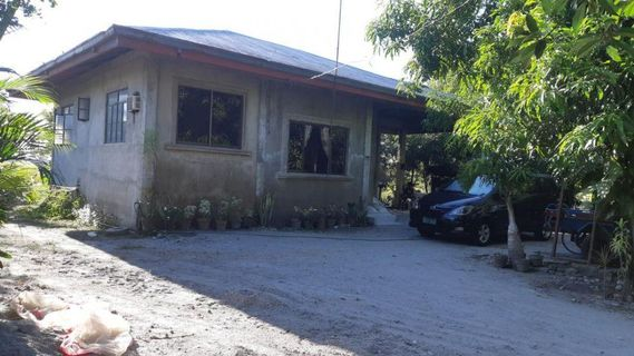 Farm lot with fish pond mini piggery house and lot at Tarlac