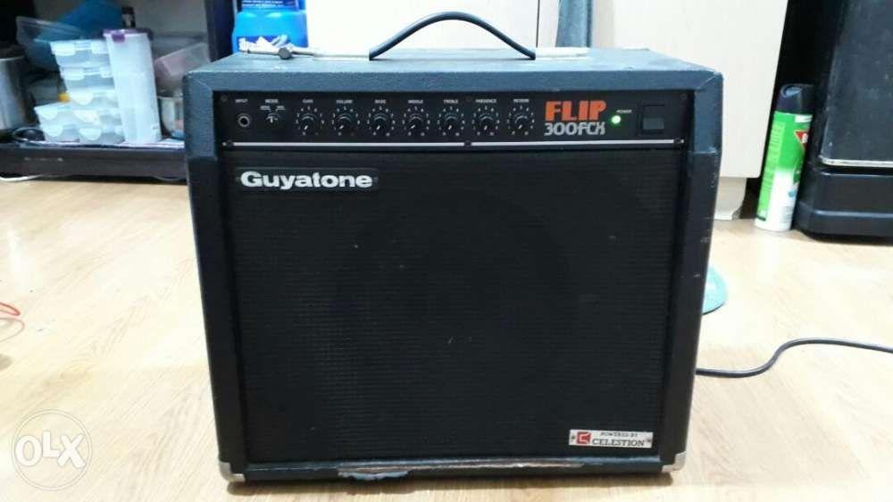 Guyatone Flip 300 FCX tube amplifier on Carousell