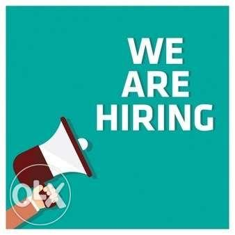 Looking for an Office Assistant