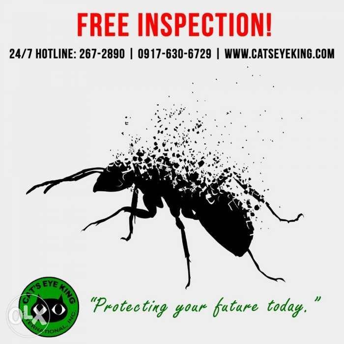 Best Termite Control Services Anay Control Pesticides Pest Control