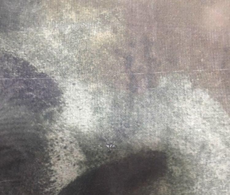 American Apparel Vintage Camouflage Sheer Long Sleeve Shirt Top