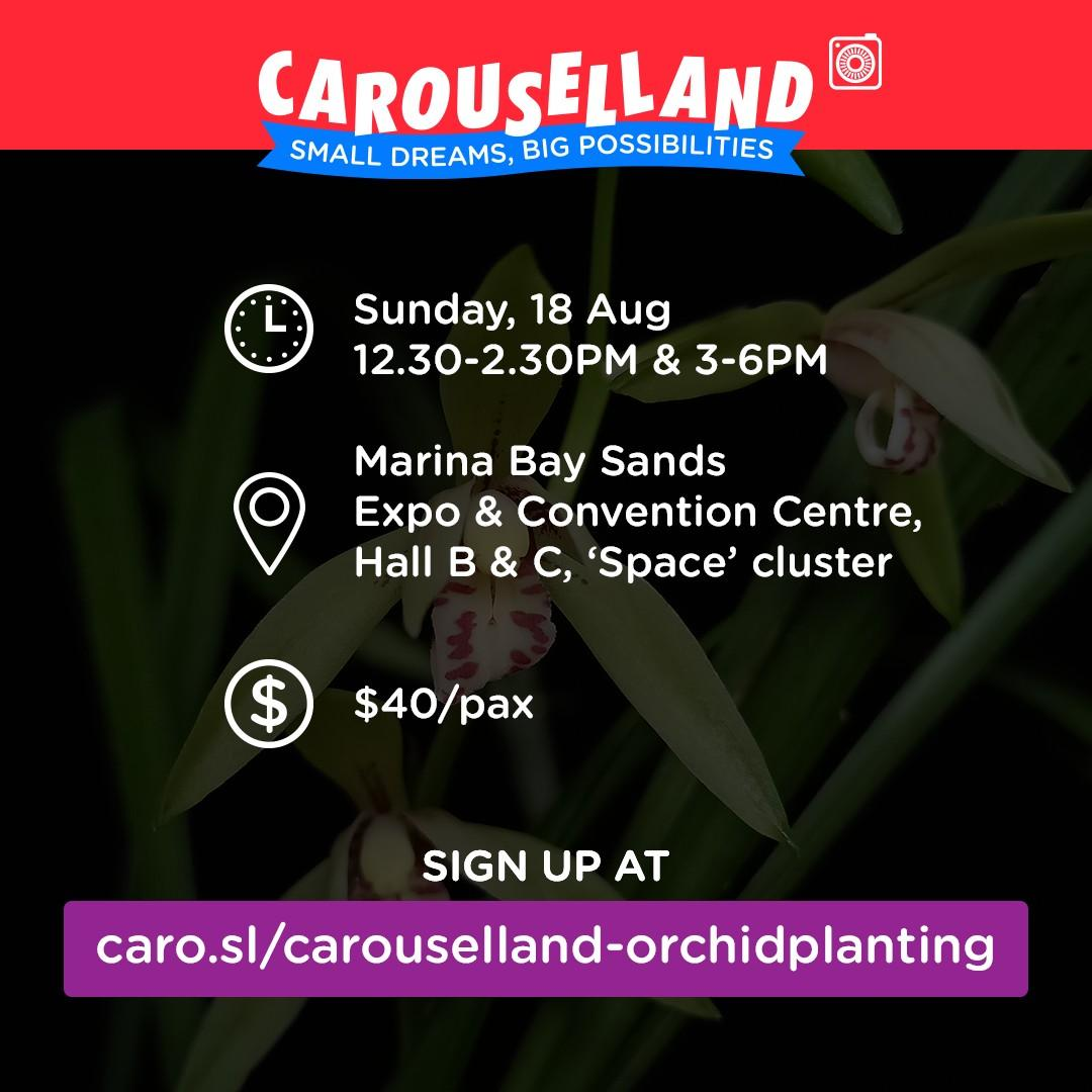 Orchid Planting Workshop at Carouselland 2019