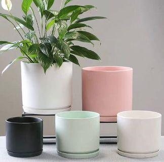 Minimalist cylinder White ceramic Planter with base