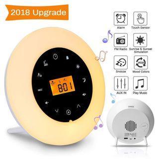 Item#159 - Wake Up Light Radio Clock