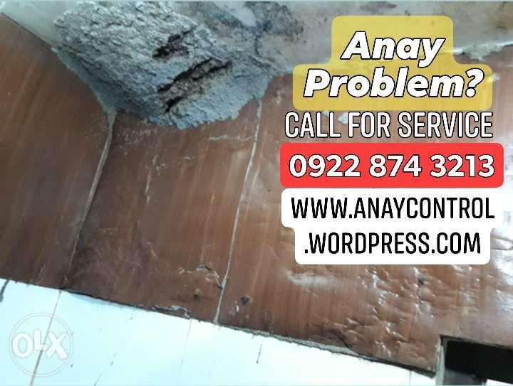 Anay Control Service in Bulacan Pampanga Nueva Ecija and Metro Manila