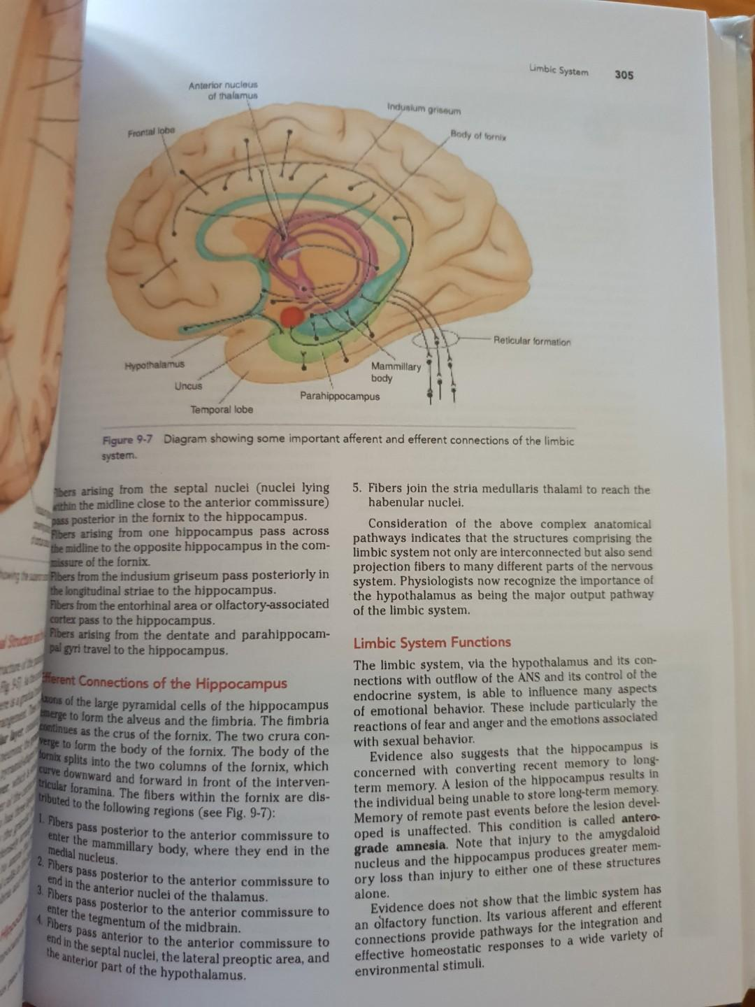 Snell's Clinical Neuroanatomy 8th edition medicine medical books med first year