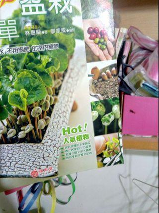 🚚 種子盆栽植物