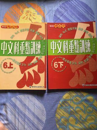 小學補充 小六中文 樂思中文