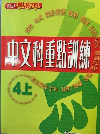 小學補充 小四中文 樂思中文 中文練習