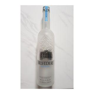 Empty Vodka Bottle