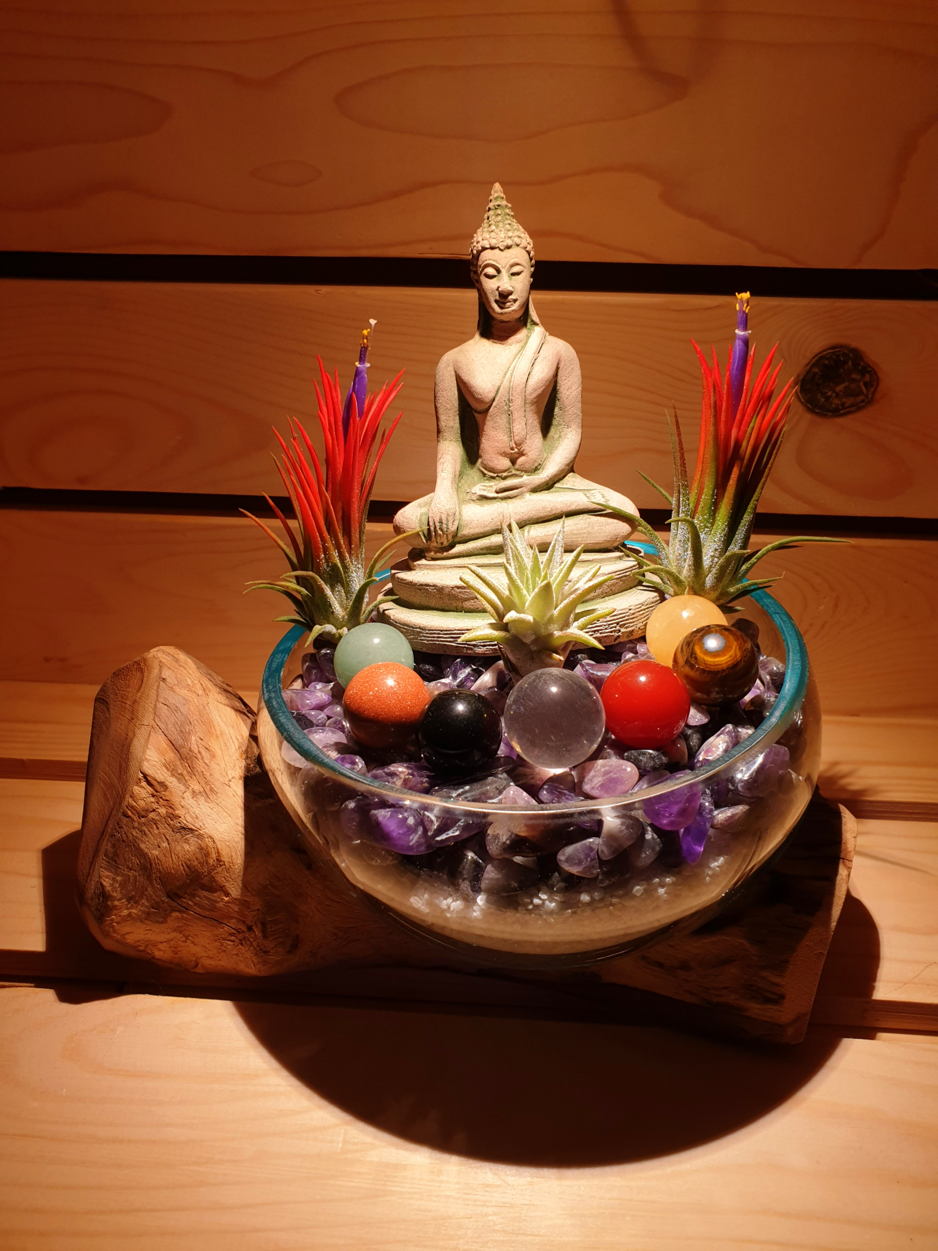 Zen Series Buddha Crystals with Air Plants on Teak Wood
