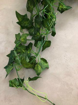 Ivy - Artifical hanging plant