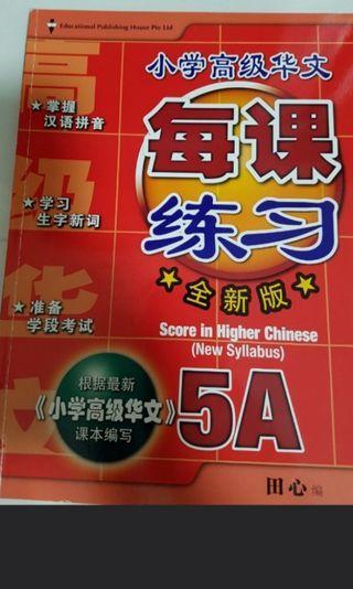 Brand New Pri 5A Chinese Assessment
