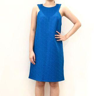 Warehouse Blue Dress
