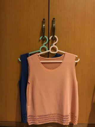 Blue and Pink Crop Top
